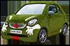 Easibug Car